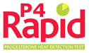 Footer-Logo-P4-Rapid
