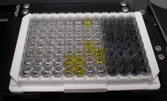 Johnes Disease Testing Results